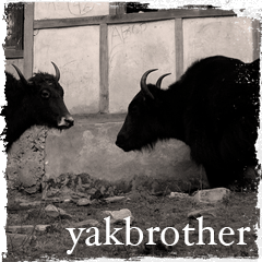 Yakbrother